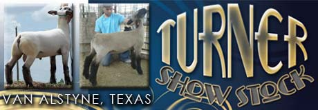 Turner Show Stock